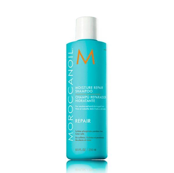 Шампунь увлажняющий восстанавливающий 250мл  — Moroccanoil Уход за волосами Фотография